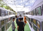 Wildlife Photo Exhibition at the CIDFF - 2017